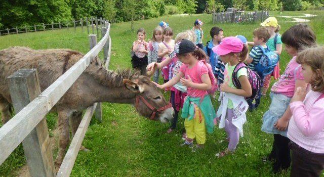 Kraj blanických rytířů láká na výlet děti i dospělé