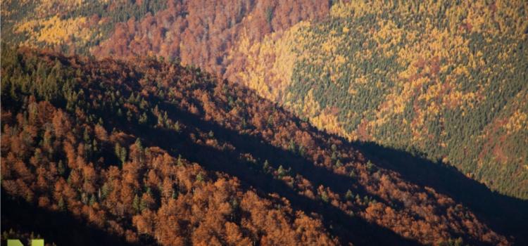 Rumunsko a jeho divoká příroda
